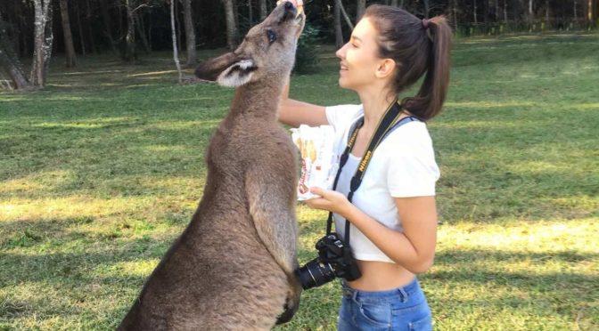 Rozhovor s Lucií: Rozdala jsem 80 životopisů, abych našla první brigádu v Austrálii