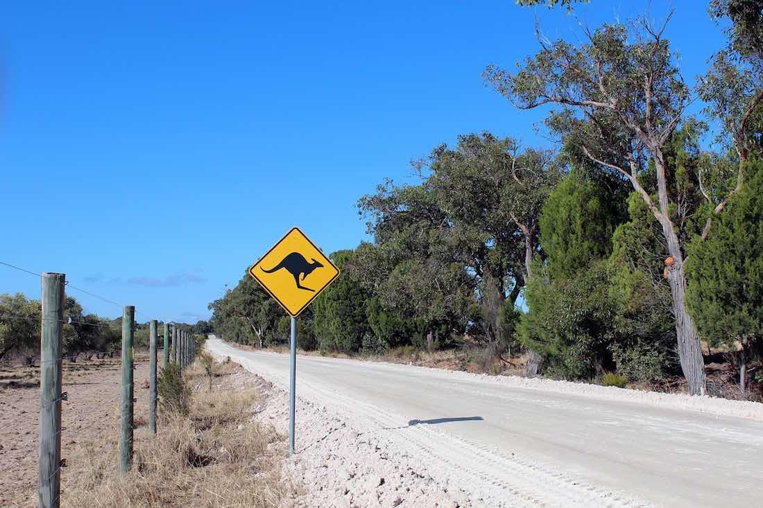 řízení v austrálii