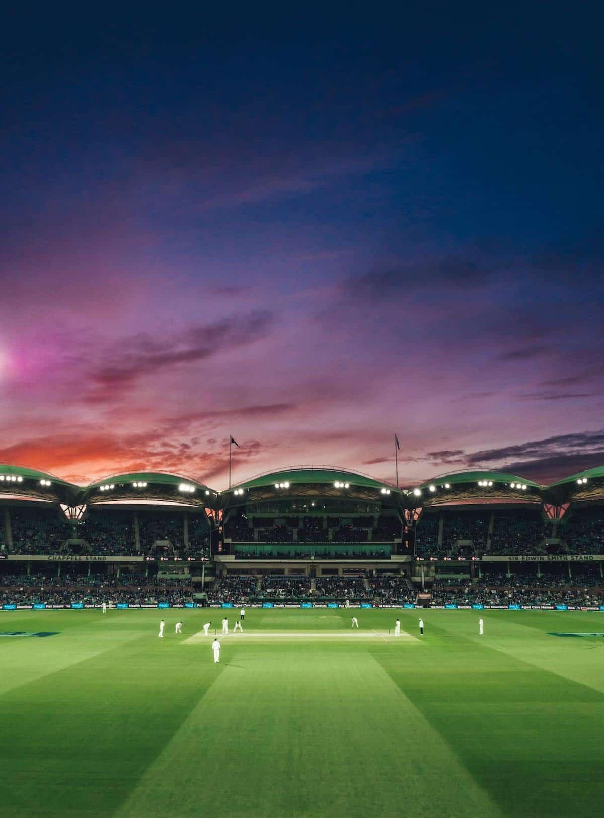 kriket-hřiště