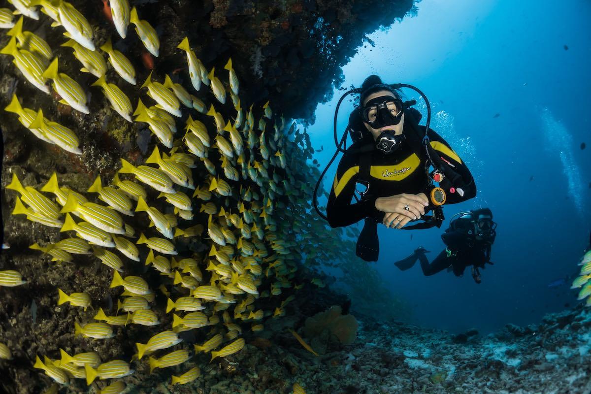 sport v Austrálii-potápění